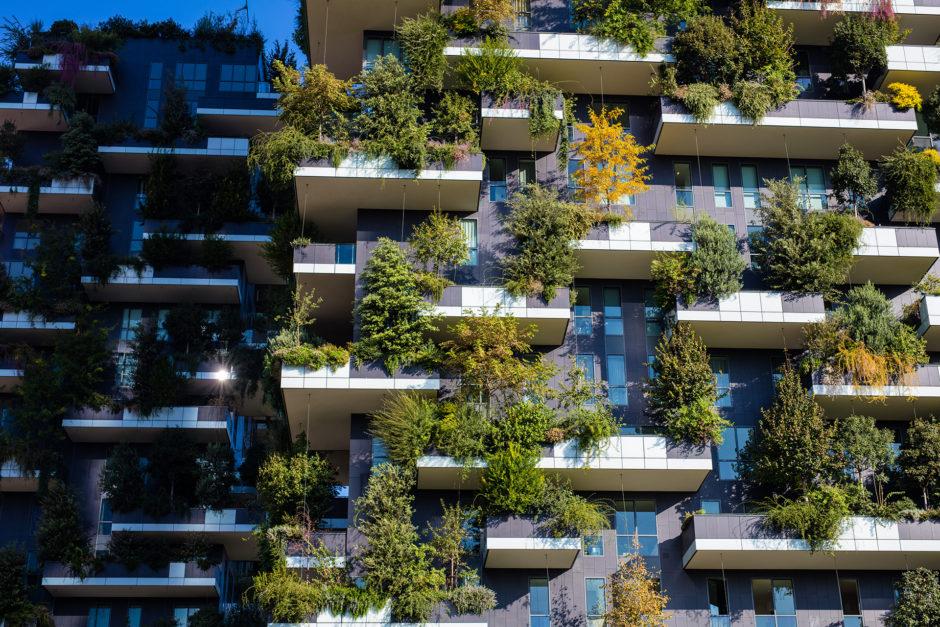 Naturaleza residencial: una tendencia arquitectónica